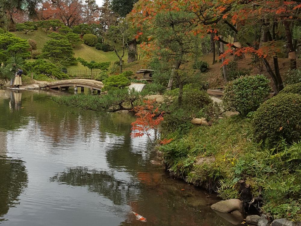 De japanse tuin ontwerp aanleg en geschiedenis